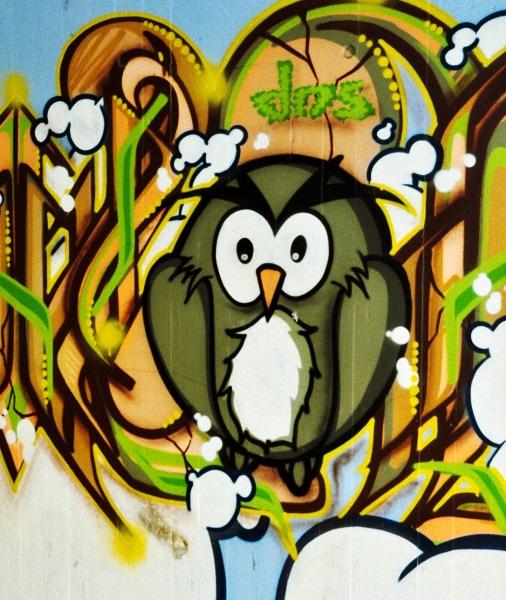 eule grafitti